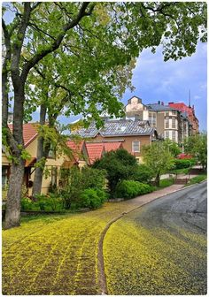 Yellow Spring Road, Turku, Finland