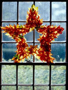 Star Leaf Wreath (say that three times fast!)