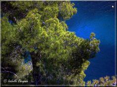 Le bleu des calanques de Marseille...  https://www.facebook.com/pages/Mistoulin-et-Mistouline-en-Provence/384825751531072
