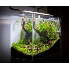Chihiros LED A serie 80-100cm 50W A801 - E-SHOP Rostlinna-akvaria.cz