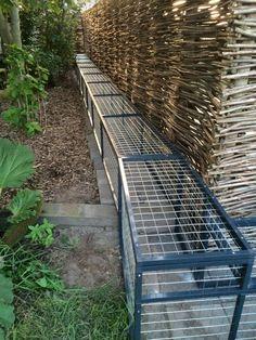 Outside Cat Enclosure, Rabbit Enclosure, Outdoor Cat Habitat, Outdoor Cats, Cool Cat Trees, Cool Cats, Cat Window, Cat Playground, Animal Room