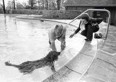 President and Mrs. Ford with their dog Liberty at the Camp David swimming pool.  October 26, 1974.