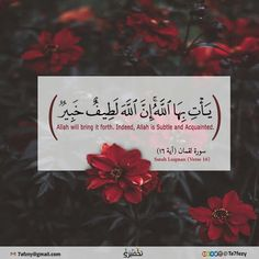 """Surah Luqman - [And Luqman said], """"O my son, indeed if wrong should be the weight of a mustard seed and should be within a rock or [anywhere] in the heavens or in the earth, Allah will bring it forth. Indeed, Allah is Subtle and Acquainted. Quran Verses, Quran Quotes, Arabic Quotes, Prayer Quotes, Wisdom Quotes, Islam Allah, Islam Quran, Doa Islam, Eid Cards"""