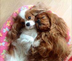 shhhh, don't wake him....