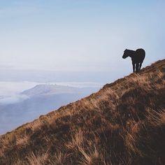 finn's photo: Hay Bluff, Wales
