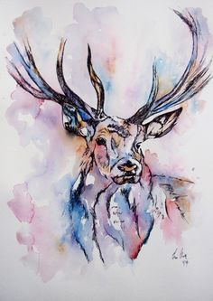 Colourful Deer illustration/ watercolor painting by fiona-clarke.com