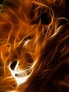 Beautiful Leo/fire sign all in one!!