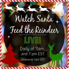 Watch Santa Feed the Reindeer LIVE! - Raining Hot Coupons