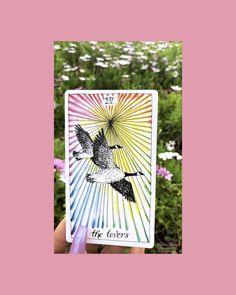 Tarot, Meditation, Bee, Lovers, Honey Bees, Bees, Tarot Cards, Zen