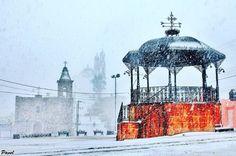 Ciudades enteras fueron cubiertas por hasta 20 cm de nieve.   17 Hermosas imágenes de las nevadas en México que te dejarán frío