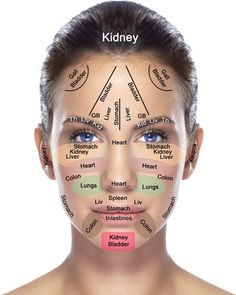 Face & Organ Map | Everything in your body is intricately connected!
