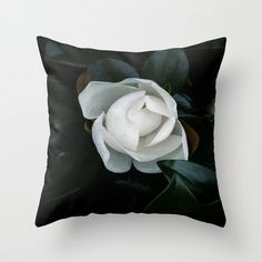 """magnolia, south, tree, bloom, home decor, throw pillow - """"Becoming"""""""