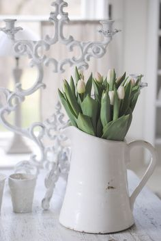 Tulips! My absolute favorite!!