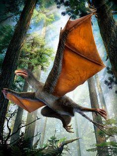BioOrbis: Yi Qi: O Dinossauro Dragão?