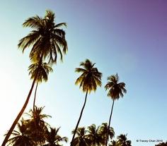 Maracas Beach, Trinidad & Tobago, #beaches #Trinidad #MaracasBay