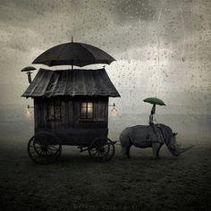 Journey by photographer Leszek Bujnowski