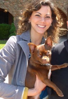 Bringing Fido to pet-friendly wineries in Napa Valley with Knight Wine Tours