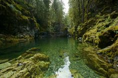 Opal Creek wilderness, Oregon
