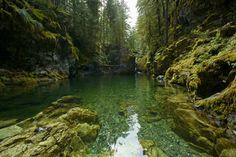 Opal Creek wilderness, Oregon
