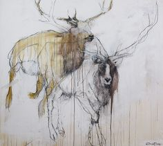 Helen Durant, Ascent, charcoal/acrylic, 58 x - Southwest Art Magazine Animal Paintings, Animal Drawings, Deer Paintings, Architectural Prints, Southwest Art, Illustration Sketches, Illustrations, 2d Art, Magazine Art