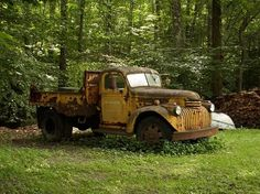 Old chevy truck Classic Pickup Trucks, Old Pickup Trucks, Farm Trucks, New Trucks, 1946 Chevy Truck, Old Chevy Pickups, Old John Deere Tractors, Cool Old Cars, Chevy Muscle Cars