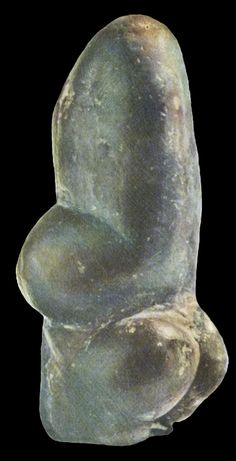 Fertility figurine from Trasimeno . Voluptuous body with erectile head . Historical Artifacts, Ancient Artifacts, Art Sculpture, Sculptures, Art Pariétal, Paleolithic Art, Cultural Artifact, Ancient Goddesses, Art Premier