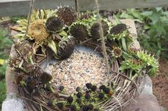 I'm planning on having seed heads... As soon as my flowers grow.