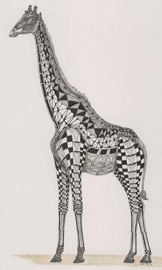 Adri van Garderen, Giraffe, template by Ben Kwok