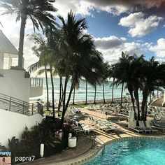 Credit to @papra7 : #cool #very #fabulous #place #hotel @diplomatbeachresort #polishgirl #chicago #girl #going #places #good #taste #palms #beach #pool #water #fun #inthesun #sun #funday  #hollywoodtapfl #hollywoodfl #hollywoodflorida #hollywoodbeach #downtownhollywood #miami #fortlauderdale #ftlauderdale #aventura #dania #daniabeach #hallandale #hallandalebeach #davie #pembrokepines #miramar @hollywoodtapfl (at The Diplomat Beach Resort)