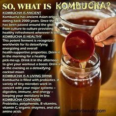 What is Kombucha? @ Amy Jacobson-so you got me curious with all thos kombucha recipes-are you making some-I want to try it! Kombucha Benefits, Health Benefits, Kombucha Brewing, Kombucha Starter, Detox Drinks, Healthy Drinks, Healthy Foods, Eating Healthy, Tibicos