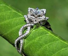 Pretty #Ring #Nature