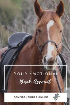 Imagine that every morning when you wake up, ten credits are deposited in your emotional bank account. >> Confident Rider - mindset, movement and nervous system awareness for equestrians Horseback Riding Lessons, Emotional Resilience, Horse Riding Tips, Bank Account, Training Tips, Nervous System, Wake Up, Confident, Equestrian