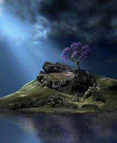 I've held onto the image of the purple tree in the movie What Dreams May Come like it's intimately sacred.