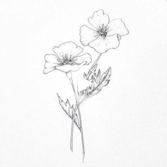 Drawing // poppies // doodles в 2019 г. poppies tattoo, drawings и Cute Flower Drawing, Easy Flower Drawings, Flower Drawing Images, Flower Tattoo Drawings, Flower Sketches, Doodle Drawings, Flower Tattoos, Flower Art, Simple Poppy Tattoo