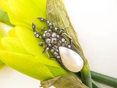Absolutely stunning & unusual 19th C. Diamond & Mother of Pearl Bug Brooch!