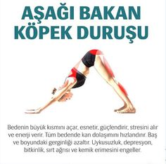 Körperübungen - Vücüd eğzersizleri ve yararları - Fitness Pilates Training, Pilates Workout, Body Weight Hiit Workout, Pilates Yoga, Yoga Fitness, Physical Fitness, Health Fitness, Yoga Meditation, Yoga Inspiration