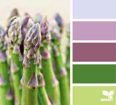 DesignSeeds® FB { asparagus brights } October 24 2012