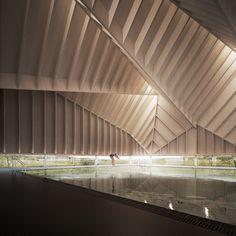 alfriston school | pool ~ duggan morris architects