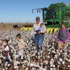 Meet a Texas Cotton Farmer: Brandon Patschke