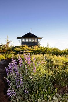 I always wanted to stay in a fire lookout...  this is Mt Baker, WA.