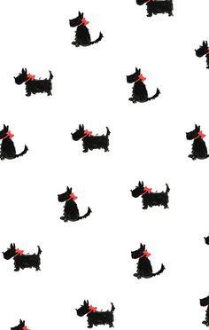 Yorkies, in red by Joy Laforme, via Flickr