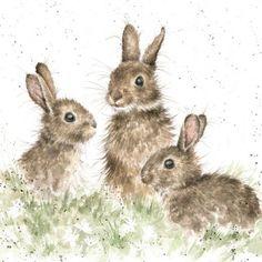 Wenskaart | Bunny party