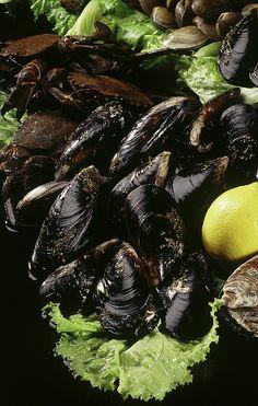 Mejillones , nécoras y ostras, pero de Galiza....ñamñam