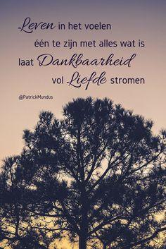 Leven in het voelen één te zijn met alles wat is, laat dankbaarheid vol Liefde stromen...
