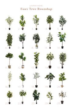 Faux Tree Roundup - Juniper Home - Mari Tree Bedroom, Master Bedroom, Black Bedroom Decor, Palm Beach Regency, Cream Sofa, Black Leather Sofas, Pattern And Decoration, Fiddle Leaf Fig, Old Hollywood Movies