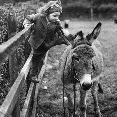 girl on a donkey