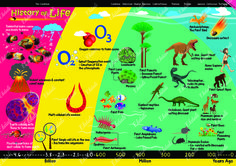 #Evolution #History of Life #Evolve #Kids #Charts #Science #Educate #Chart #Posters # Learning #ekdali # kids posters #wall decor \