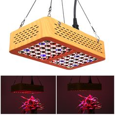 LED Grow Light - LED, Life, Light Angle, Wide Wavelenght Range, 2900 Lumen - This LED grow light comes with a total of 60 powerful LEDs that feature different types of light to stimulate the growth of your plants. Grow Lights For Plants, Led Grow Lights, Best Online Clothing Stores, Led Aquarium Lighting, 60 Degrees, Degree Angle, Types Of Lighting, Different Light