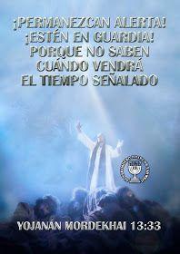 "EL YISRAEL DE YAHWEH: EL OLIVO FRONDOSO EL MISTERIO DEVELADO A SHAUL ""PABLO"" Israel, Movie Posters, Truths, To Tell, Christ, The World, Christian Living, Spirituality, Film Poster"