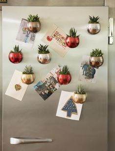 mini fridge magnetized succulent gardens